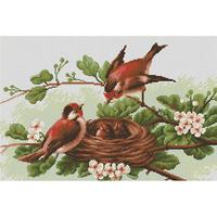 Oiseaux au Nid - Luca-S -  BM3005