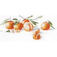 Mandarines - Luca-S - B2255