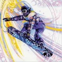 Snow skate  1414 Riolis