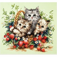 Beaux chatons  58-12  Chudo igla