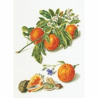 Orange et Mandarine  3061A  Thea Gouverneur