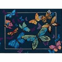 Papillons exotiques  6846  Dimensions