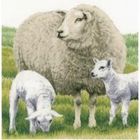 Moutons  0171528  Lanarte