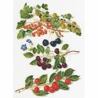 Fruits rouge  3063  Thea Gouverneur
