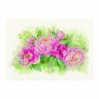 Bouquet de pivoines  0170933  Lanarte