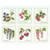 Six Fruits  2091A  Thea Gouverneur