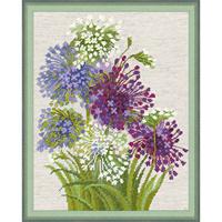 Allium -  Riolis 1484