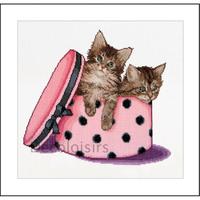 Kitten twins - Thea Gouverneur 734A