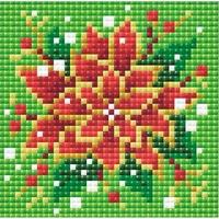 Poinsettia  AM0019  Riolis