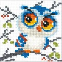 Riolis  Scops Owl  1784