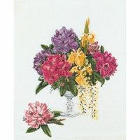 Rhododendron  1074  Thea Gouverneur
