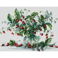 Bouquet de Fraises - Luca-S B2267