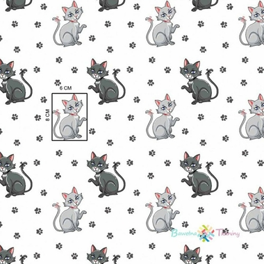 chat et chaton 2