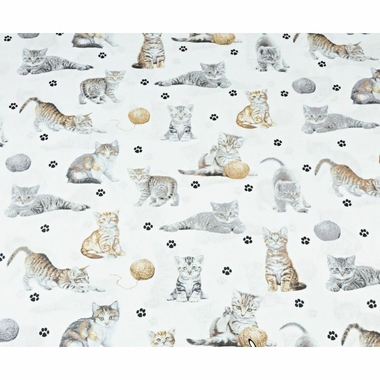 cotton-beige-cats-on-white-background