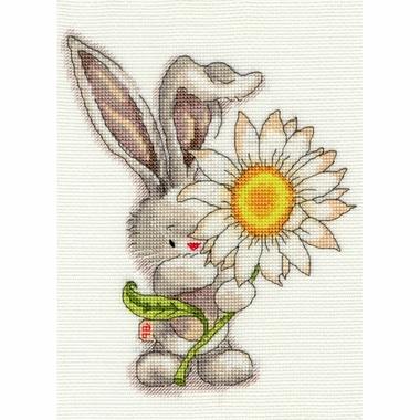 XBB1-Daisy-small