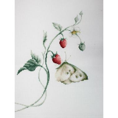 Arome d'été (papillon et fraises) - Luca-S LB2268 - Kit broderie point de croix en vente sur www.la-brodeuse.com