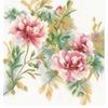 Branche de rose  0008127  Lanarte
