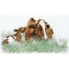 Thea Gouverneur - 449 Aïda - Vache et son veau