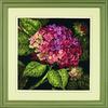Hortensia en fleur - Dimensions - Kit Canevas Code D20053