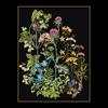 Thea Gouverneur  424-05  Fleurs des champs