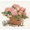 Thea Gouverneur  2047  Hortensia Rose  Lin