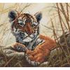 Petit tigre pensif  5678000-01121  MAIA