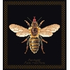 Honey bee  3017-05  Thea Gouverneur
