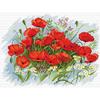 Fleurs de Coquelicots  B272  LUCA-S