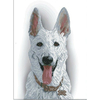 CHIEN LE WHITE SHEEPDOG  80811
