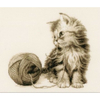 Chaton joueur  0162378   VERVACO