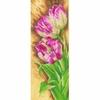 Tulipes  0144533  Lanarte
