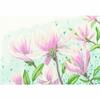 Fleurs de Magnolia  0149997  Lanarte