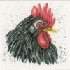 Poule noir  0157489  LANARTE