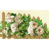Rose blanche sur clôture  1059  Riolis