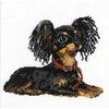 Petit chien russe  1000  RIOLIS