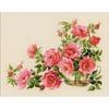 ROSES ROSE  100-032  RIOLIS