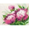 Pivoines en fleurs  100-039  RIOLIS