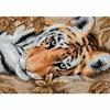 Tigre charmant  65056  Dimensions