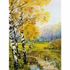 Prairie d automne  1134  Riolis