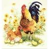 Coq et sa famille  64-09  Chudo Igla
