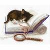 Chaton sur un livre  1725  Riolis
