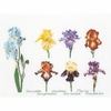 Irises  3051A  Thea Gouverneur