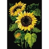 Tournesols  AM0006  Riolis