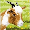 Chèvre  0154282  Vervaco