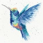 XHD57-Rainbow-small