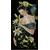 Kit broderie Lanarte - Femme aux lys PN-0155748 en vente sur www.la-brodeuse.com