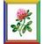 Fleur de trèfle - Riolis HB-152 - Kit broderie point de croix facile sur www.la-brodeuse.com