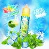 Ice Mint 50ml - Fruizee
