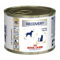 Royal Canin Veterinary Diet Canine Feline Recovery