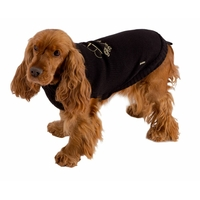 Pull pour Chien Royal Dog Bobby